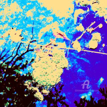 Goémon, le funambule