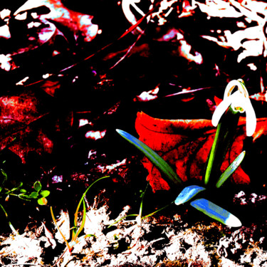 Floral spaniel